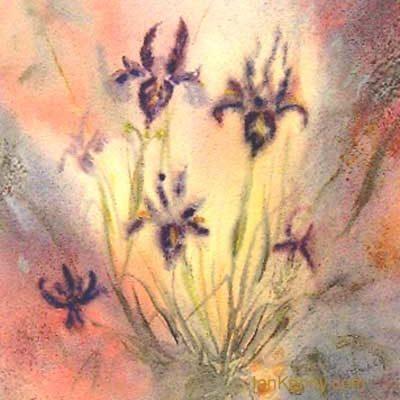 Gillian McDonald - Irises I