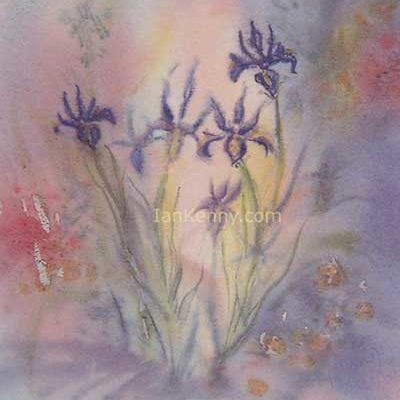 Gillian McDonald - Irises II